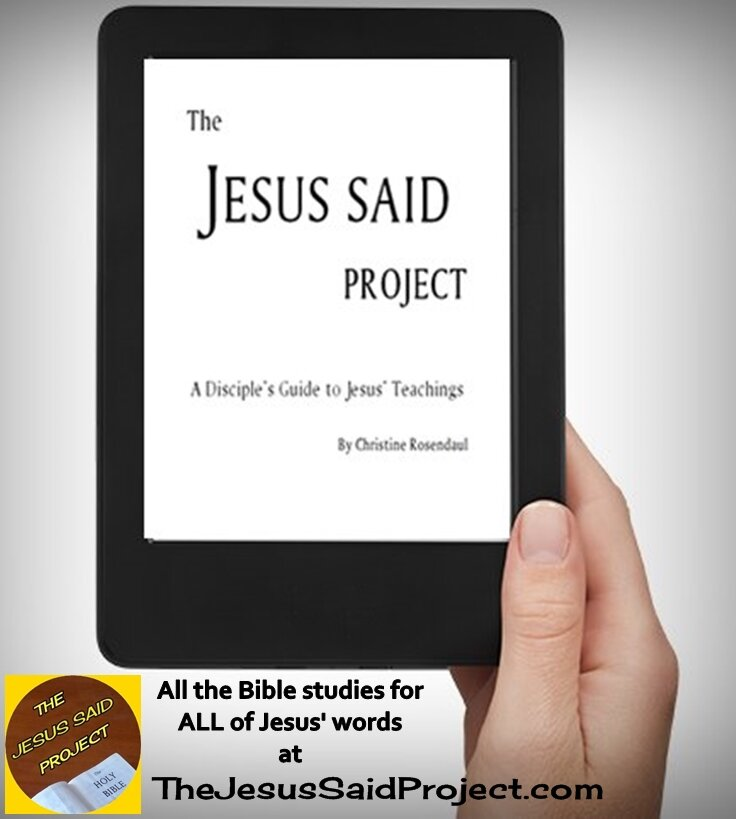 Book The Jesus Said Project